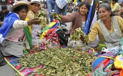 Pope Francis to chew the Bolivian Coca leaf in his trip to the Andean nation