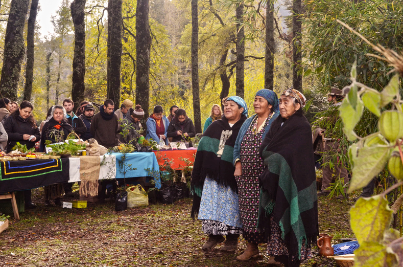 "Women initiating the ""Trafinktu"" ceremony, an ancestral Mapuche gift exchanging ceremony for sharing knowledge and seeds. Such exchanges strengthen the community, and deepen solidarity. In this picture, women are welcoming each participant asking what they have brought with them to share and exchange with others."