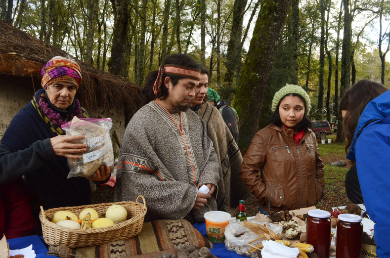 Mapuche community members engaging in barter and exchange.